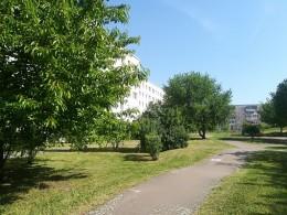 Bild zu Objekt 1583/600/401